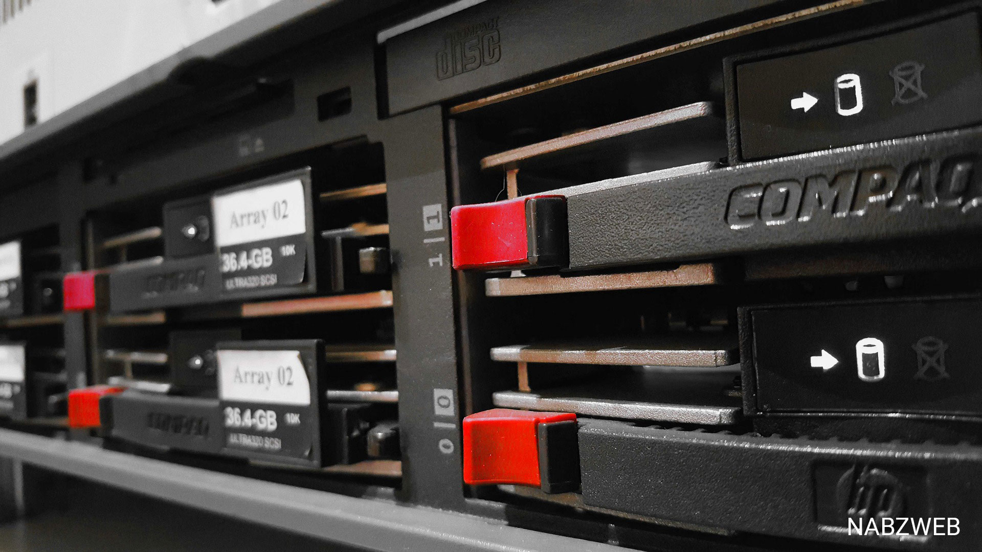 Difference Between Shared Hosting And Virtual Server